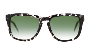 tortoiseshell, turtle, havana, D-frame, wayfarer, carl zeiss vision, green lenses, graded lenses, green graded lenses, square frame, unisex sunglasses, women's sunglasses, men's sunglasses, eyewear, designer eyewear, designer sunglasses